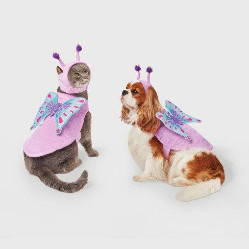Butterfly Halloween Dog and Cat Costume - Hyde & EEK! Boutique™ - image 1 of 4