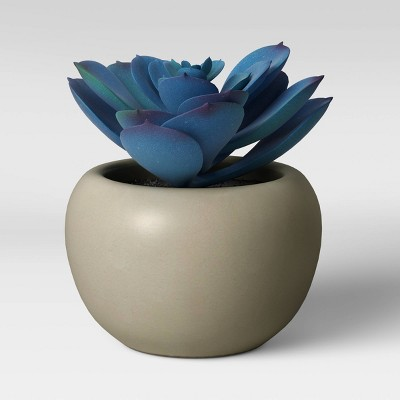 Faux Blue Succulent in White Pot - Threshold™