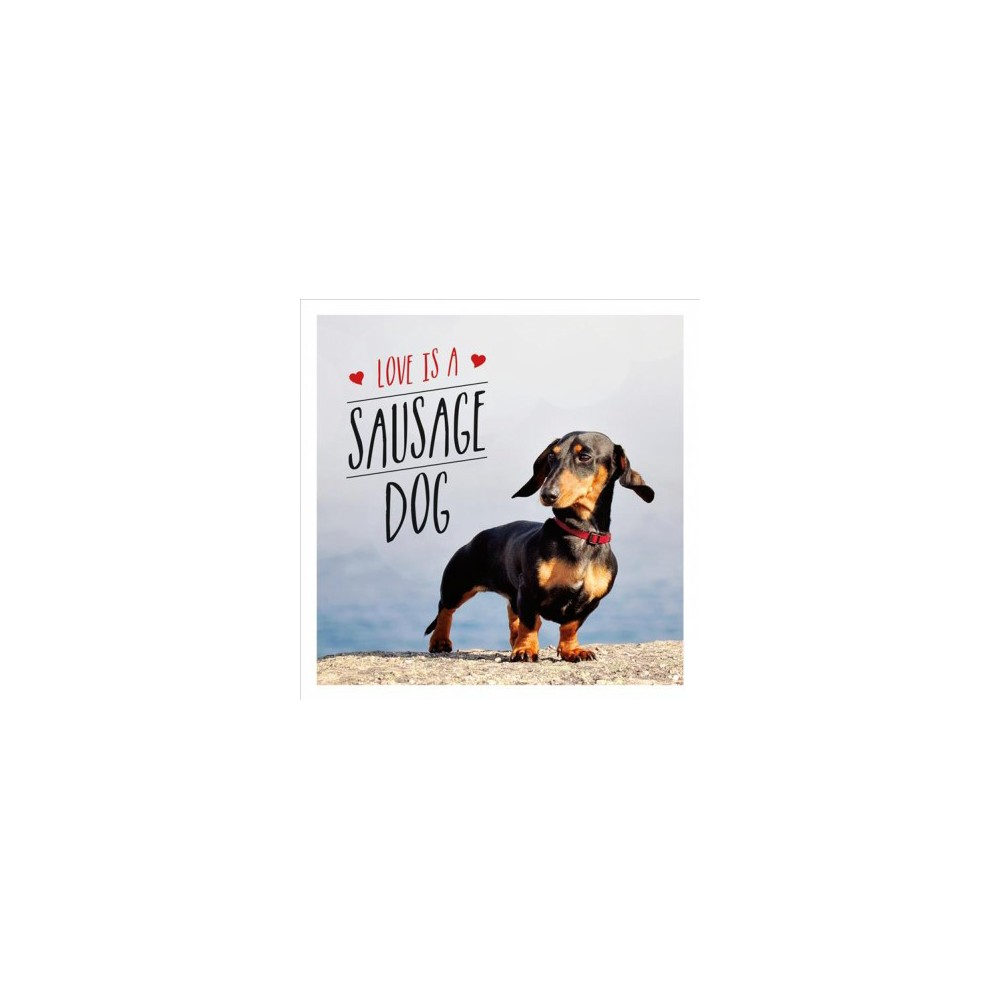 Love Is a Sausage Dog - (Hardcover)