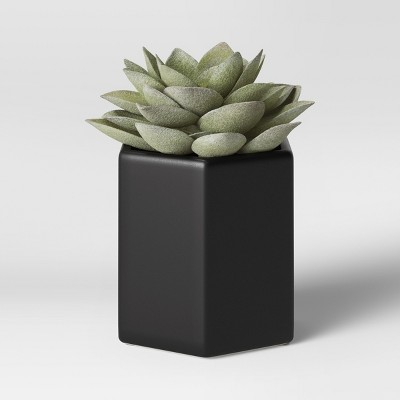 Artificial Succulent with Black Pot Small - Project 62™
