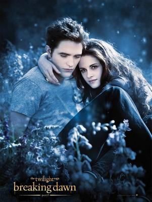 The Twilight Saga Breaking Dawn Part 2 Book