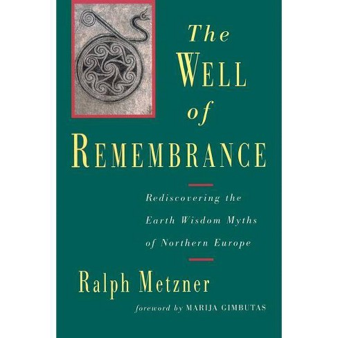 The Well of Remembrance - by  Ralph Metzner (Paperback) - image 1 of 1