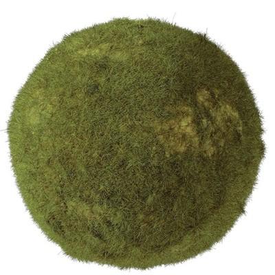 """Sullivans Moss Orb Decorative Filler 5.5""""H Green"""
