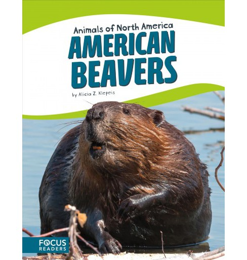 American Beavers (Paperback) (Alicia Z. Klepeis) - image 1 of 1