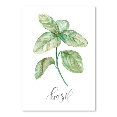 Americanflat Basil by Cami Monet Poster
