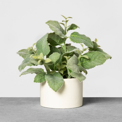 Faux Mint Potted Plant - Hearth & Hand™ with Magnolia - image 1 of 3