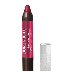 Unscented Burt's Bees Gloss Lip Crayon Pacific Coast - 0.10oz