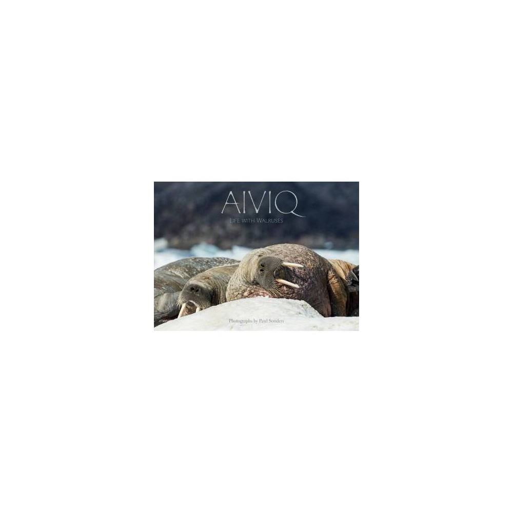 Aiviq : Life With Walruses - (Hardcover)