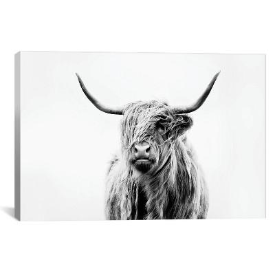 """26"""" x 40"""" Portrait Of A Highland Cow by Dorit Fuhg Canvas Print Black/White - iCanvas"""