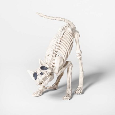 """9"""" Cat Skeleton Decorative Halloween Prop - Hyde & EEK! Boutique™ - image 1 of 1"""