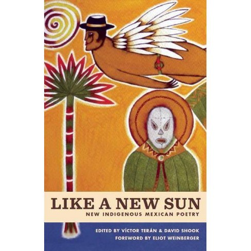 Like a New Sun - (Paperback) - image 1 of 1