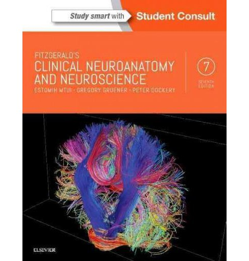 Fitzgerald's Clinical Neuroanatomy and Neuroscience (Student) (Paperback) (M.D. Estomih Mtui & M.D. - image 1 of 1