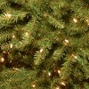 7ft National Christmas Tree Company Full Pre-Lit Dunhill Fir Hinged Artificial Christmas Tree with 700 Clear Lights - image 2 of 3