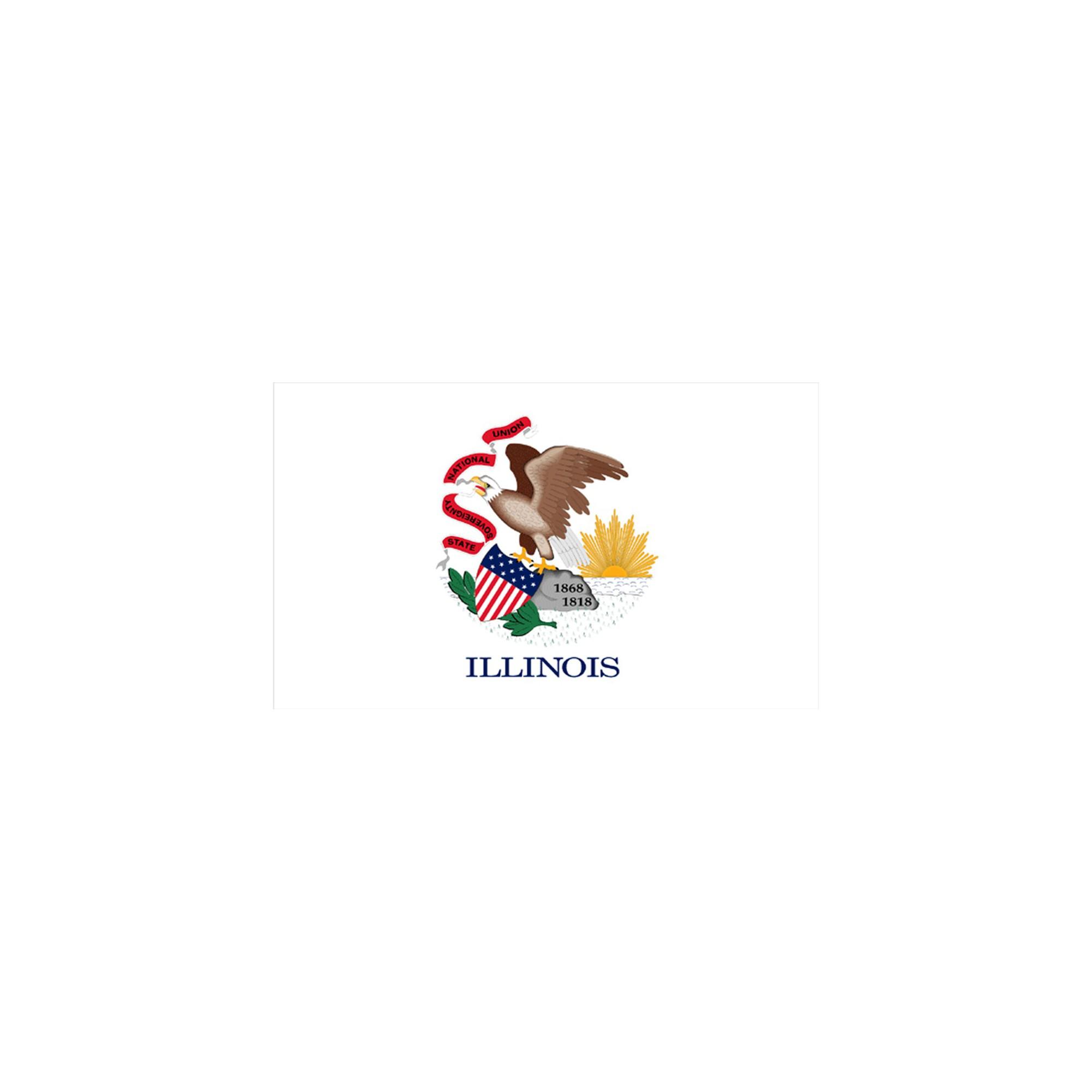 Halloween Illinois State Flag - 3' x 5'