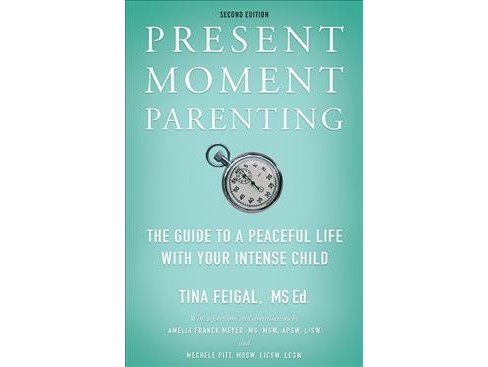 Present Moment Parenting : The Guide to a Peaceful Life With Your Intense Child (Paperback) (Tina - image 1 of 1