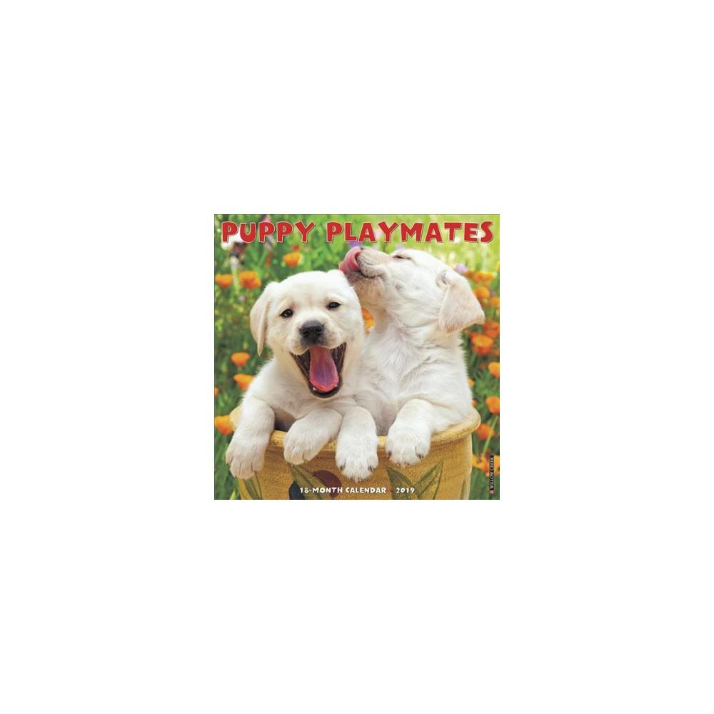 Puppy Playmates 2019 Calendar - (Paperback)