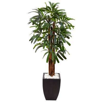 5.5ft Artificial Raphis Palm Tree in Black Planter - Nearly Natural