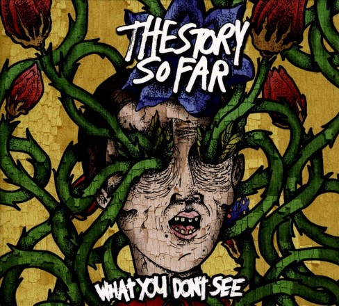 Story so far - What you don't see (CD) - image 1 of 1