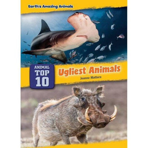 Ugliest Animals - (Core Content Science -- Animal Top Ten) by  Joanne Mattern (Hardcover) - image 1 of 1