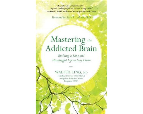 Mastering the Addicted Brain : Building a Sane and Meaningful Life After Getting Clean -  (Paperback) - image 1 of 1