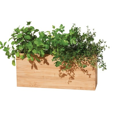 Modern Sprout Hydroplanter Hydroponic Smart Planter