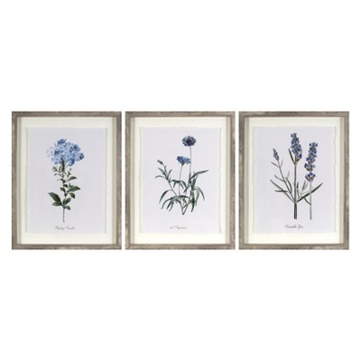 "(Set of 3)16""x20"" Framed Vintage Botanicals Decorative Wall Art - Threshold™"
