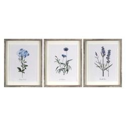 "(Set of 3) 16""x20"" Framed Vintage Botanicals Decorative Wall Art - Threshold™"