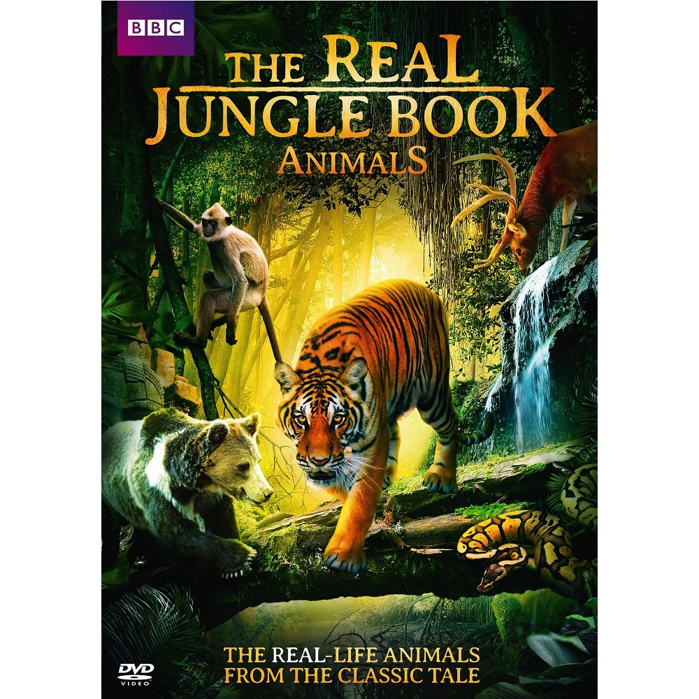 Real Jungle Book Animals (Dvd)