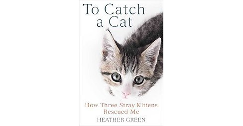 To Catch a Cat : How Three Stray Kittens Rescued Me (Paperback) (Heather Green) - image 1 of 1