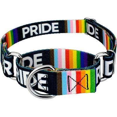 Country Brook Petz® Pride Martingale Dog Collar