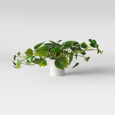 "28"" x 13"" Artificial Pothos Plant in Pot White - Threshold™"