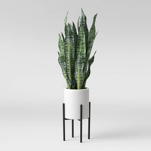 36 X 10 Artificial Snake Plant In Standing Planter White Project 62 Target