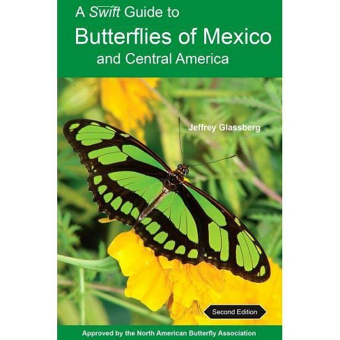A Swift Guide to Butterflies of Mexico and Central America - 2 Edition by  Jeffrey Glassberg (Paperback) - image 1 of 1