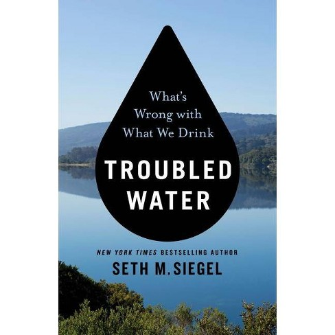 Troubled Water - by  Seth M Siegel (Paperback) - image 1 of 1