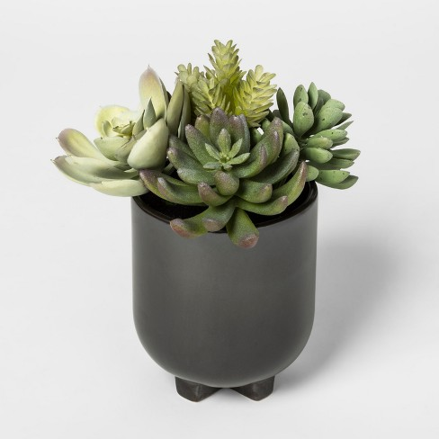 Faux Succulent in Black Pot - Project 62™ - image 1 of 1