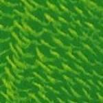 green flash (8v8v)