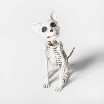 Sitting Kitten Skeleton Decorative Halloween Prop   Hyde & Eek! Boutique™ by Hyde & Eek! Boutique