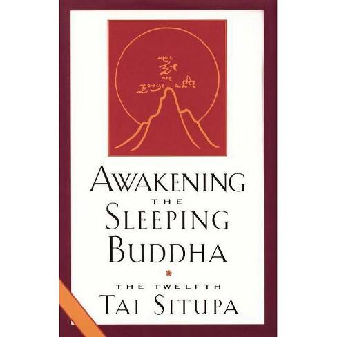 Awakening the Sleeping Buddha - by  Twelfth Tai Situpa & Pema & The Twelfth Tai Situpa (Paperback) - image 1 of 1