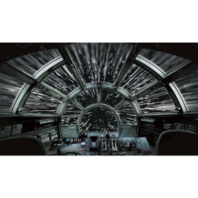 Star Wars Millennium Falcon Peel and Stick Wall Mural - RoomMates
