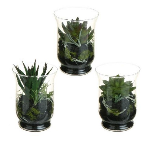 """Raz Imports Set of 3 Mixed Cactus and Succulent Artificial Plant Terrariums 6"""" - Green - image 1 of 1"""
