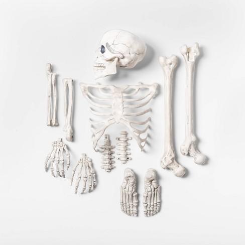 13pc Bag of Bones Decorative Halloween Prop - Hyde & EEK! Boutique™ - image 1 of 2