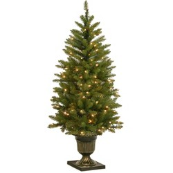 National Tree Company 4ft Pre-Lit Dunhill Fir Entrance Artificial Tree with 70 Clear Lights