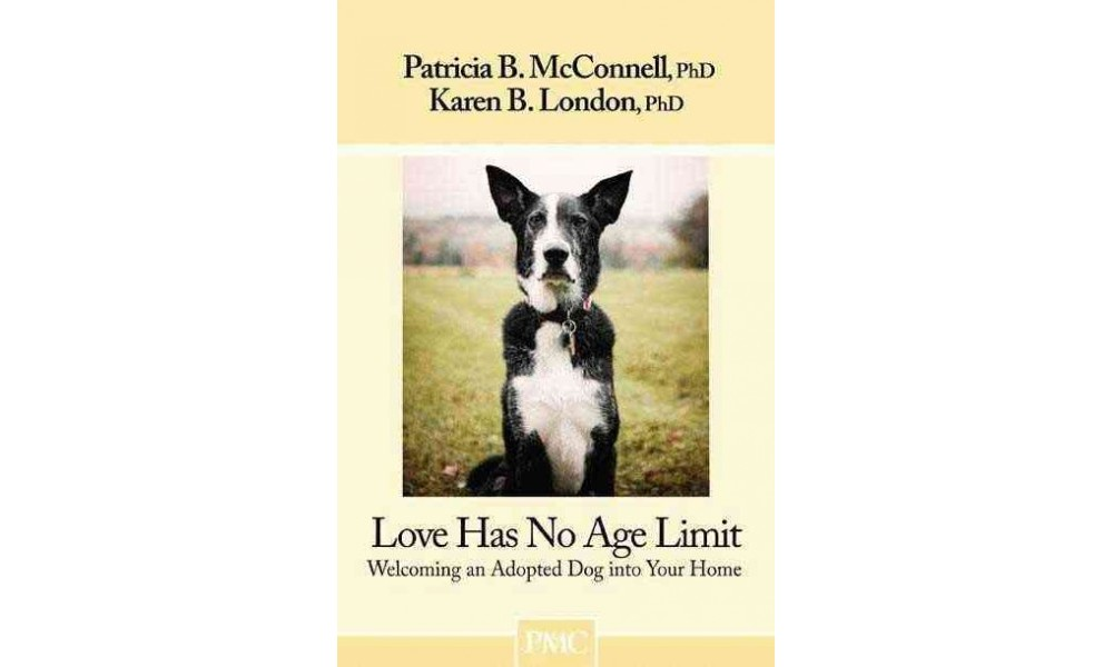 Love Has No Age Limit : Welcoming an Adopted Dog into You...