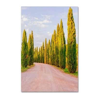 "22"" x 32"" Italian Cypress Trees by Ariane Moshayedi - Trademark Fine Art"