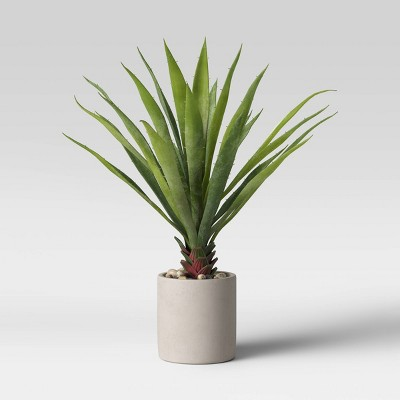 "17"" Yucca in Pot - Project 62™"
