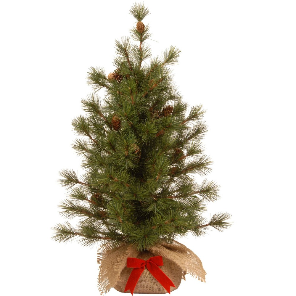 Image of 3ft Bristle Cone Pine Tree Slim - National Tree Company
