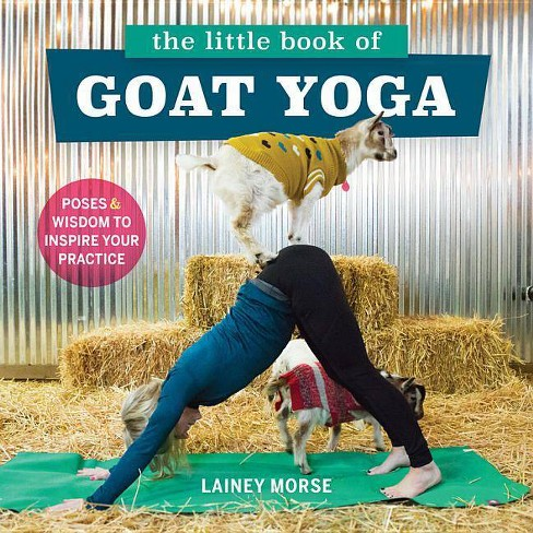 The Little Book of Goat Yoga - by  Lainey Morse (Paperback) - image 1 of 1