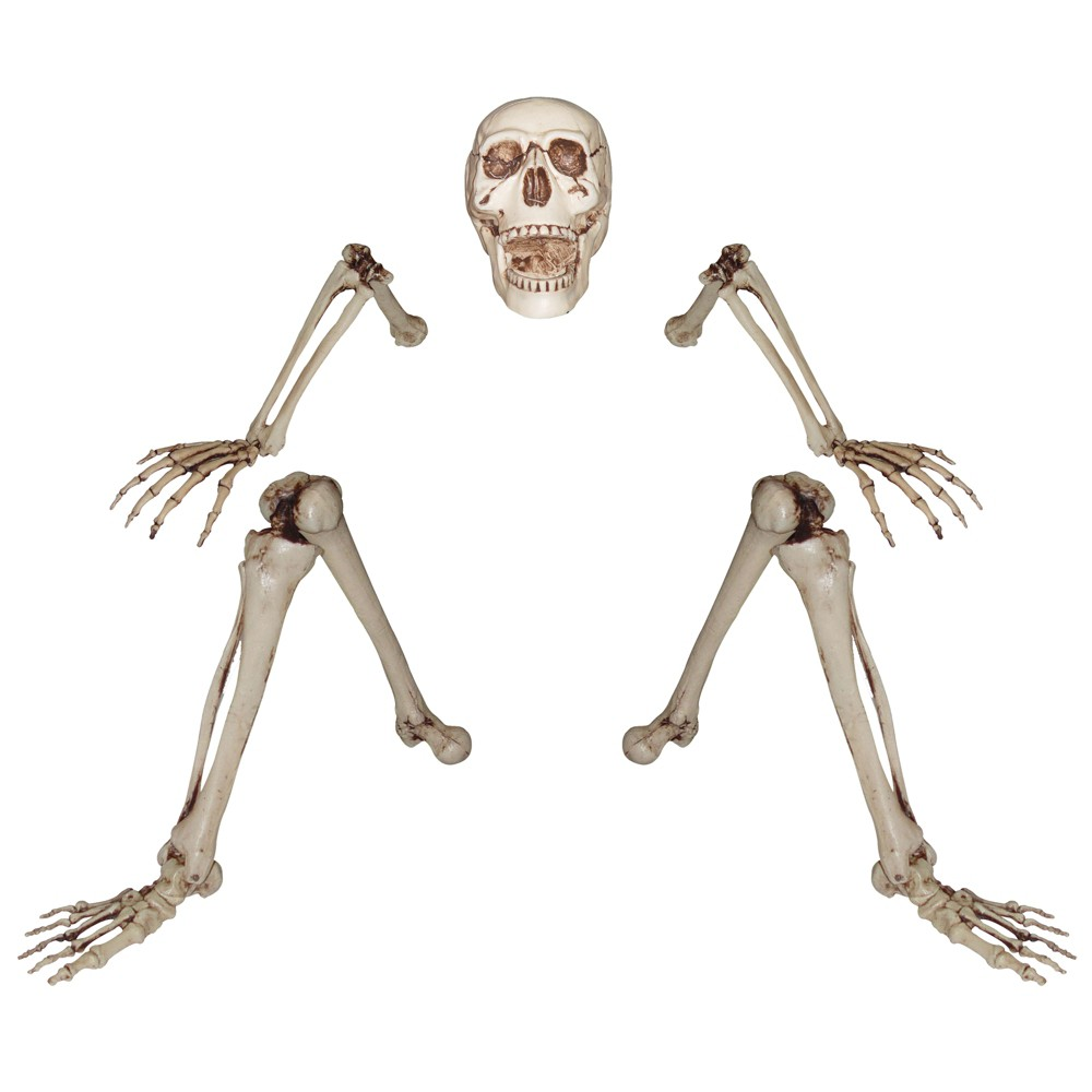 "Image of ""16"""" Halloween Ground Breaking Skeleton"""