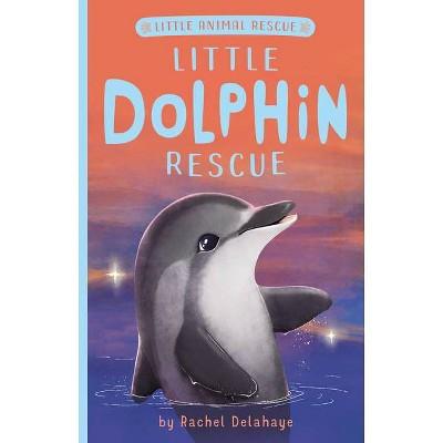 Little Dolphin Rescue - (Little Animal Rescue) by  Rachel Delahaye (Paperback)