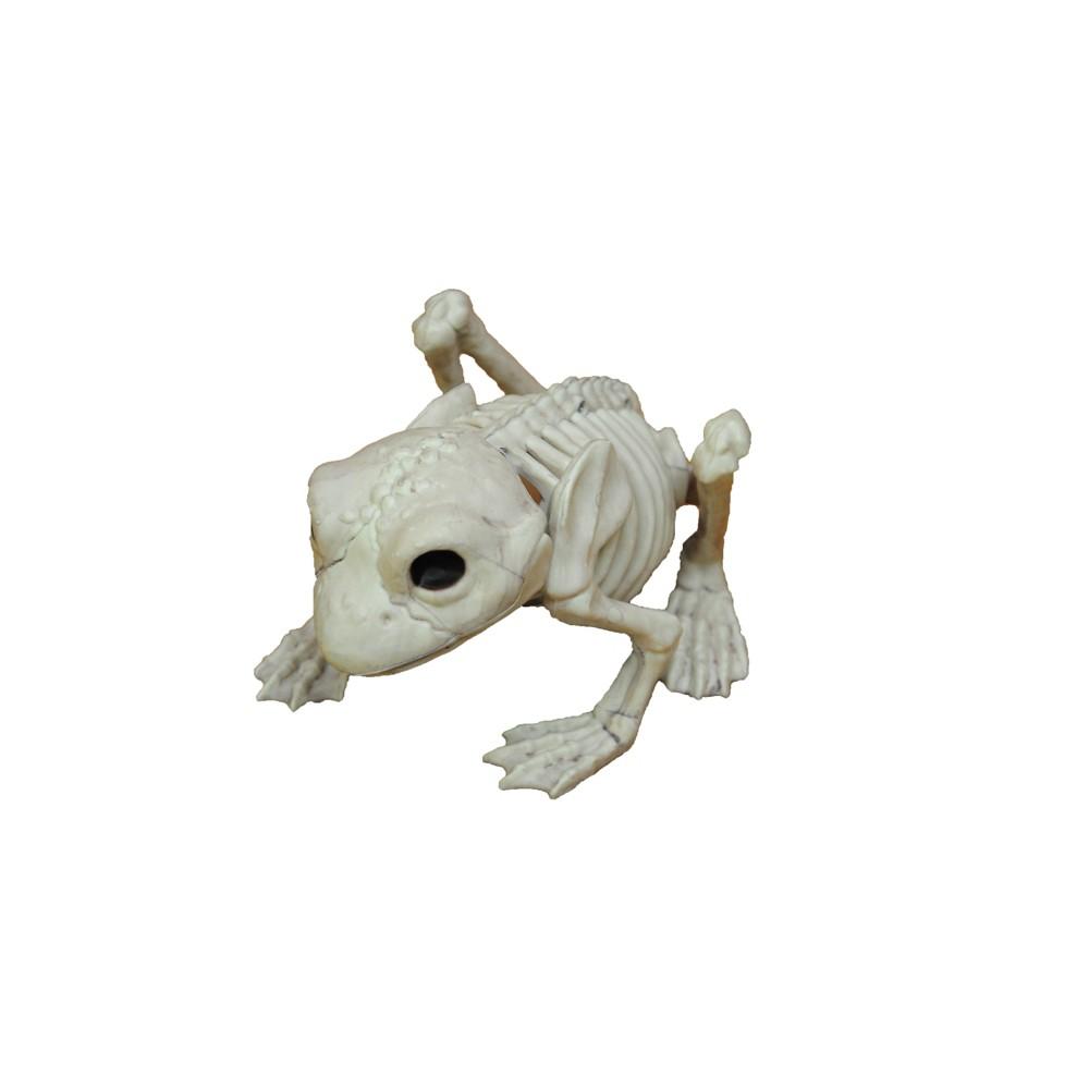5 Halloween Frog Skeleton, Multi-Colored